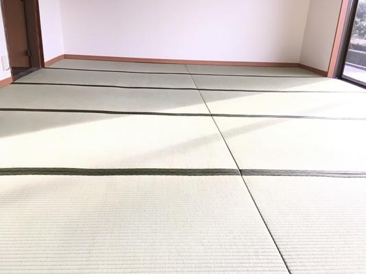 畳表替(熊本産畳表)の画像